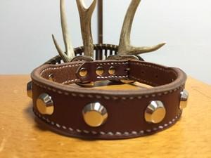 プリン型スタッズのシックなオシャレ首輪