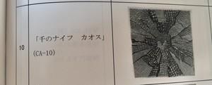 菅原晋「千のナイフ カオス」(CA -10)カタログ10