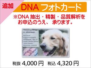 追加DNAフォトカード(1枚)