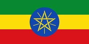 エチオピア  シダモ  中煎り