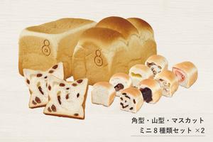 まとめセット(1.5斤→角型・山型・マスカットレーズン)(ミニ食パン8種類2セット)