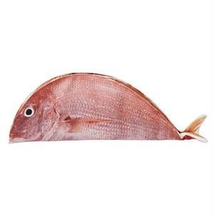 焼き魚のけいぐるみ タイ