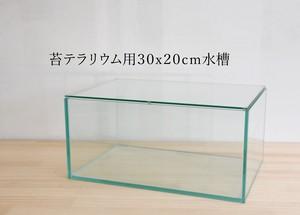 【ガラス容器】 苔テラリウム用 30x20cmガラス水槽 (300x200xh140mm)