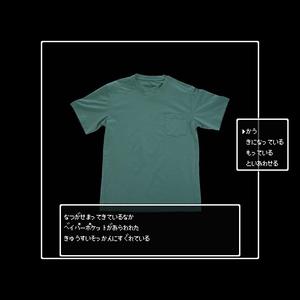 Vapor Pocket Tee Men (ベイパーポケット)Green Teton Bros.
