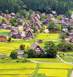 【30%OFF OPENING SALE!!】World Heritage Shirakawa-go and Takayama, Gold leaf experience *with Lunch