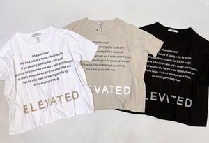 AGNOST(アグノスト) インパクトロゴワイド t-shirt  2021夏物新作