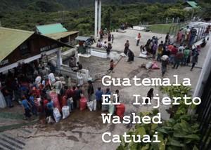 『150g』 Guatemala El injerto washed 深煎り