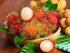 冷凍 ランブータン (Frozen Rambutan fruit) 500g
