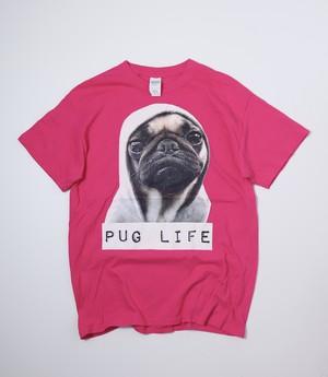 s/s  Animal T-shirts  ドック アニマルtシャツ パグ  Pink M A774