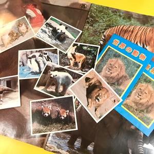 無加工のおもしろさを☆世界の動物シールセット☆2袋6枚入