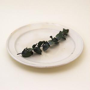 鉄散 リム皿 8寸 古谷製陶所 信楽焼