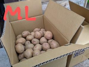 【ML】自社農場・自然栽培じゃがいも(さやあかね)5キロ