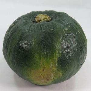ぼっちゃんかぼちゃ ミニかぼちゃ 【送料無料】