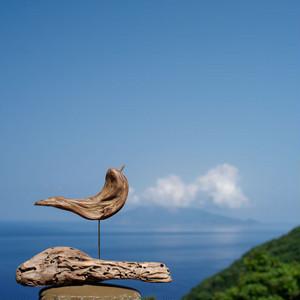 流木の鳥(S saiz) 245