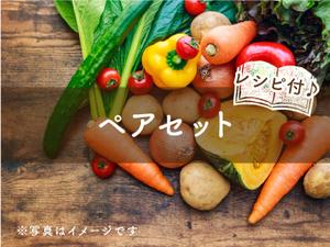【定期便】ペア(S)セット ヤマト運輸発送 hina+a(6~8種類のお野菜と手作り加工品)☆80サイズ