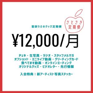 【里咲りさの定期便】12000円コース