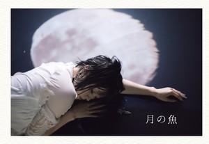 【月の魚】イメージブック