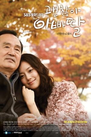 韓国ドラマ【大丈夫、パパの娘だから】DVD版 全17話