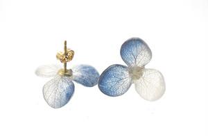 アジサイ【S/藍染】3枚花弁のピアス 14kgf / イヤリング