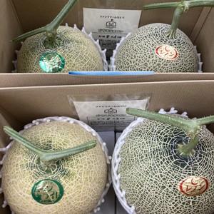 【送料無料】宮城県名取市産メロン レノン・ムーンライト 4玉化粧箱入り 1玉1.7kg以上