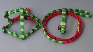 フントヒュッテオリジナル 首輪&リードセット XSサイズ(テープ幅1.0cm)
