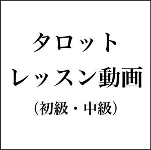 タロット(初級・中級セット・税込)【レッスン動画】