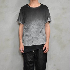 Layer S/S T 〈Alternative-monotone〉