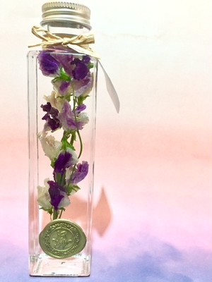 【in the bottle】sweet pea / purple