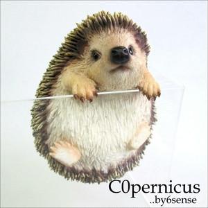 ハリネズミ 浜松雑貨屋Copernicus