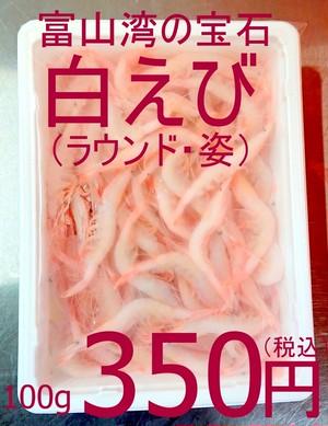 【再々入荷!大人気商品!】251 冷凍 富山湾の宝石 白えびトレーパック ラウンド(殻付き)400g(約100尾)1400円(税込)