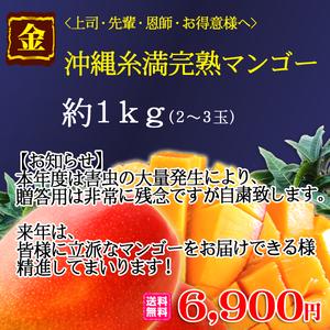 【贈】<上司・先輩・恩師・お得意様へ>沖縄糸満完熟マンゴー約1kg(2~3玉)