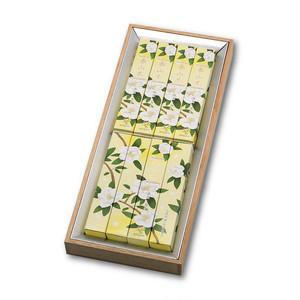 泰山木 (たいさんぼく) 8箱