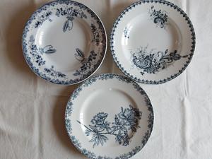 フランスアンティークプレート 皿 ブルーのボタニカル柄 3枚セット