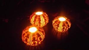 LEDキャンドルライト シーアーチン