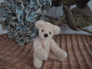 Vintage Mohair twin teddy bears (Girl)