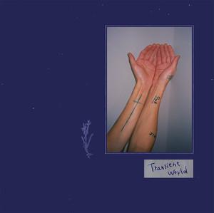 下津光史2ndソロアルバム「Transient world」CD