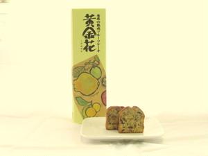奄美の黄金花(あまみのくがねばな)