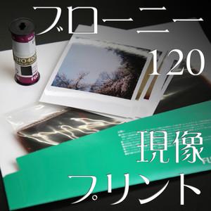 [現像+プリント]:カラーネガ120mmフィルム【ブローニー】(カテゴリ:写真 プリント 焼き付け)