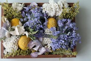 【受注制作】木箱アレンジ ( blue perfume ) Lsize