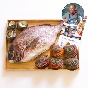【私をお皿に連れてって】おうちでBBQセット!三重の海の恵みを漁師が直送!