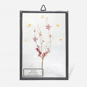 Botanical Frame S05 - Black