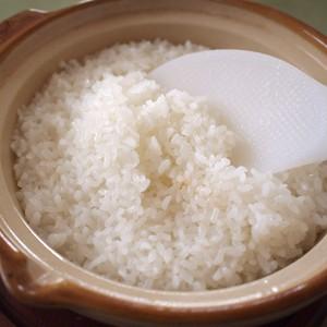 樫村ふぁーむのコシヒカリ玄米5kg