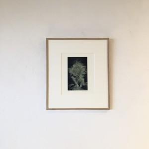 [版画アマビエ展]林孝彦「ウケヒテ ウマム」HAYASHI Takahiko 'UKEHITE MUMAMU'engraving
