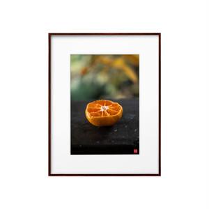 バルコニーのオレンジ(ホワイトボード)A4サイズ