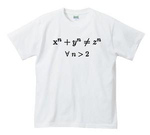 フェルマーの最終定理【ホワイト】