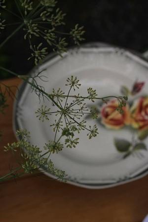 40%OFF Digoin-Sarreguemines 'ODILE' スープ皿 ※欠けあり
