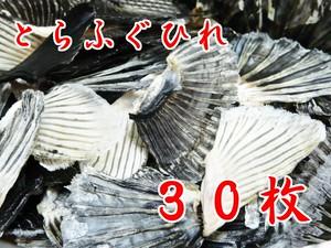 とらふぐひれ 30枚 (秘伝こだわり乾燥) 送料無料キャンペーン中!!