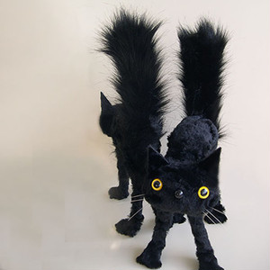 Surprised cat BK (M) ビックリ猫/受注制作