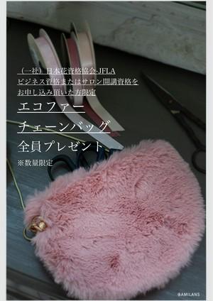 【PRESENT】エコファーチェーンバッグ