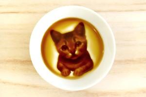 子猫の醤油皿